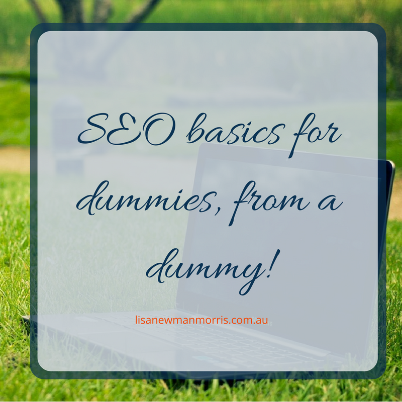 seo basics for dummies from a dummy